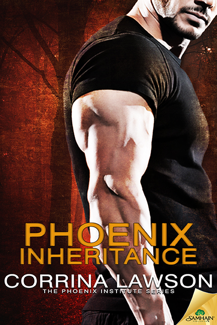 Teaser Tuesday: 'Phoenix Inheritance'